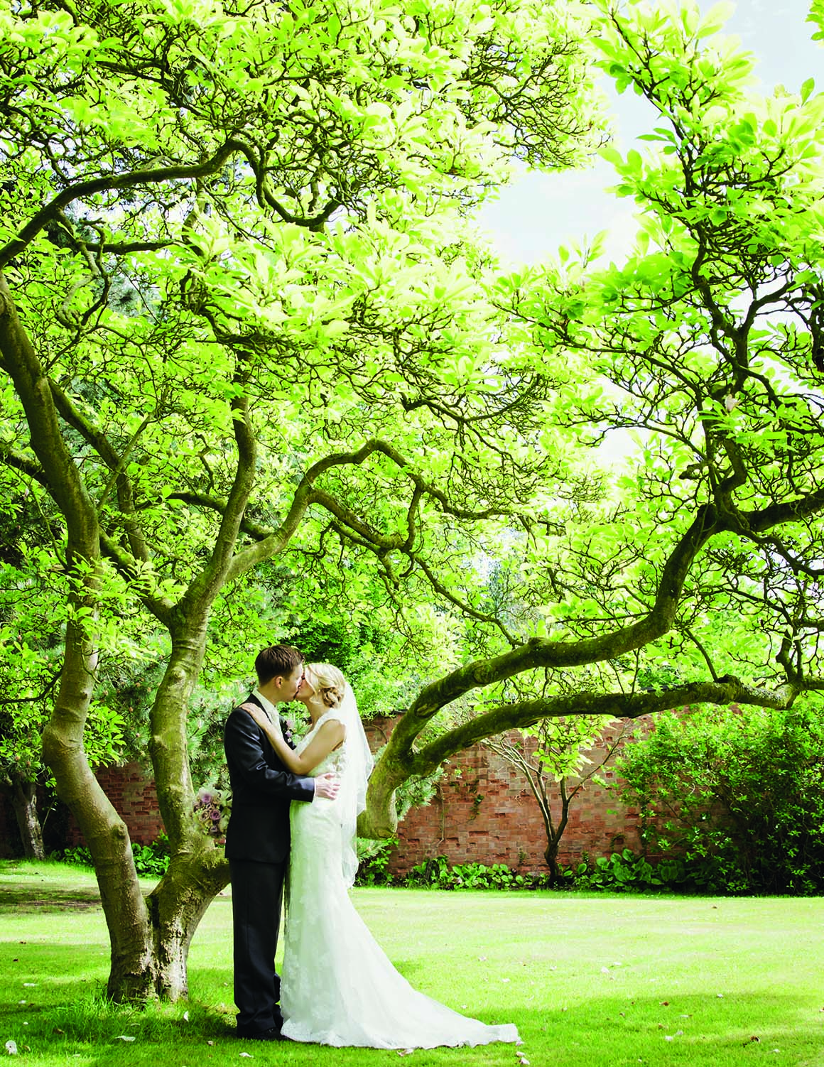 Brockencote Hall Hotel Wedding prices bride and groom under tree