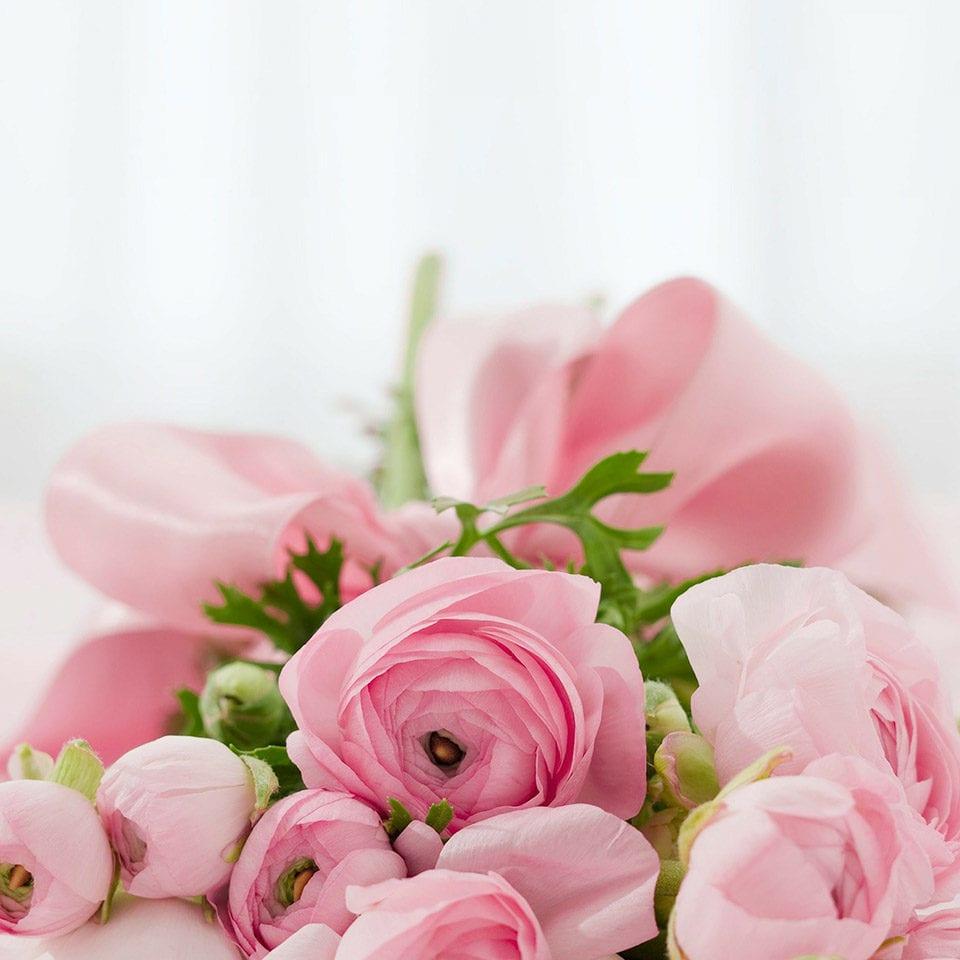 Valentine's Pink Flowers